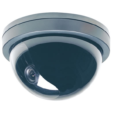 BC1009-36mm Dome, Sony CCD Color Camera, Impact Resistant, 420-450 Lines @ 0.5 lux.  Special Order. Non-Returnable.