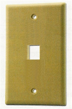 WP16I Ivory Flush Plate, 1 Outlet